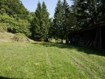 Bauernhaus, ideal als Pferdehof zu betreiben.