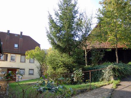 Gartenland in Forchtenberg-Ernsbach zu verpachten oder gegen Gebot zu verkaufen