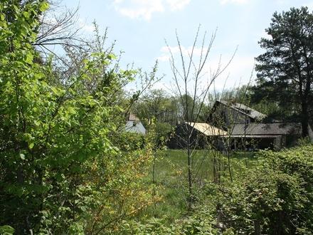 02957 Krauschwitz - Sonniges Grundstück in alter Siedlung freut sich auf Ihr Town & Country Haus und das Lachen Ihrer K…
