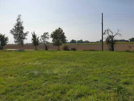 01594 Hirschstein - Sonniges Grundstück in ruhiger kleiner Siedlung freut sich auf Ihr Haus und das Lachen Ihrer Kinder