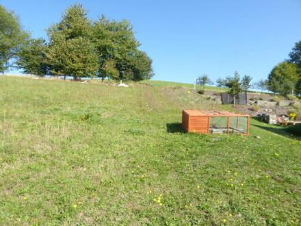 Baugrundstück in der Eifel