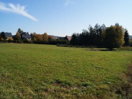 Sonniges Grundstück mit viel Grün in ruhiger Lage