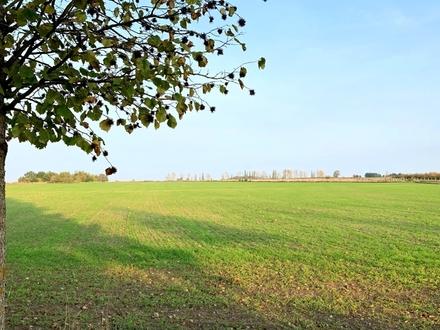 Landwirtschaftliches Eckgrundstück auf der Glindower Platte