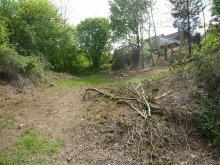 Vielfältig bebaubares Grundstück in ruhiger Lage am Ortsrand