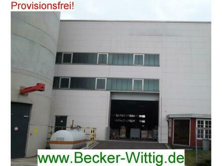 Beheizbare Halle, auf Wunsch mit Schwerlastregalen im Gewerbegebiet Mevissenstr., Büros optional