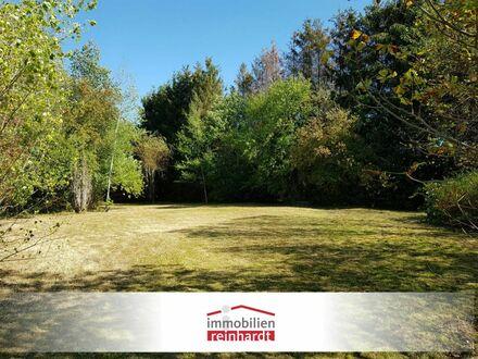 Ansprechende Baulücke mit großem Garten und Waldbestand!