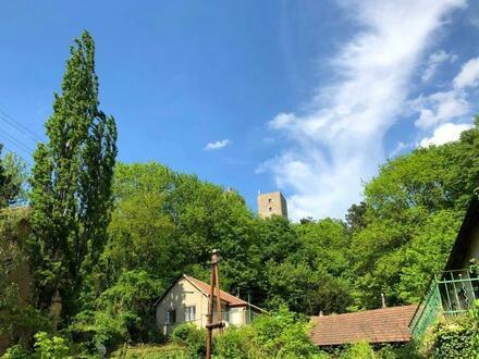 Rarität in Greifenstein : verträumte Villa mit Garten