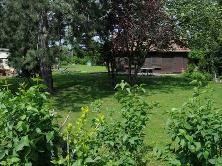 Gartengrundstück sucht naturverliebte Wohnungsbesitzer! Ruhelage!