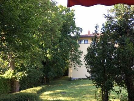 Entzückende Garconniere mit großer Terrasse in Badener Bestlage!