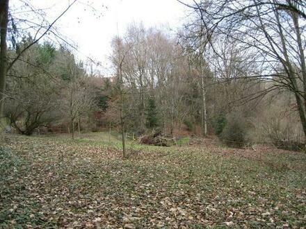Verk. idyllisches Gartengrundstück in Aalen-Fachsenfeld