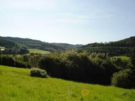 Baugrundstück in Hilchenbach - Allenbach