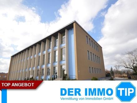 Loft in Pirna bei Dresden - modern und ruhig Wohnen in Zentrumsnähe