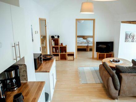 Blick von Küche über den Wohnbereich ins Schlafzimmer