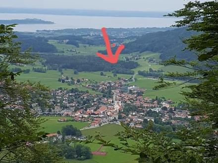 Waldfläche / Filze in 83229 Aschau i. Chiemgau, Landkreis Rosenheim