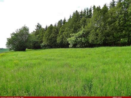 *Landwirtschaftliches Grundstück mit Weide und Mischwald*
