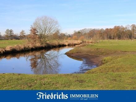 Ca. 3,16 ha pachtfreies Grünland / Weideland in Edewecht-Wittenberge, direkt angrenzend an die Aue
