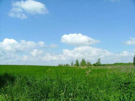 Naturnah Wohnen und Wohlfühlen - Ein schöner Platz für Ihr Haus