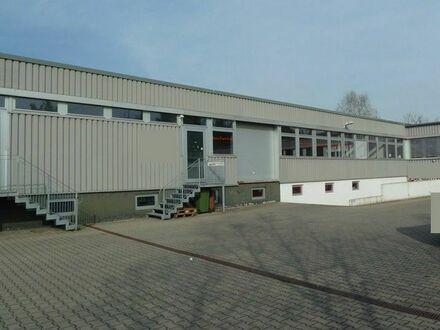 580m² Lagerfläche/Pkw-Abstellfläche im Gewerbegebiet von Viernheim zu vermieten