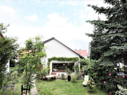 2-3 Familienhaus in zentraler Lage von Otzberg-Hering