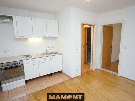 35m2 2-Zimmer inkl. Stellplatz | EG-Wohnung Baujahr 1996 | Modernisierungsbedarf