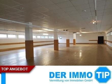 Großzügige Laden- / Hallenfläche in Limbach-Oberfrohna zur Miete