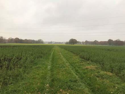 Ca. 4,8 ha Ackerland in Fürstenau gegen Höchstgebot zu verkaufen