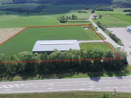 Produktions-/Lagerhalle mit Erweiterungspotential direkt an der A7