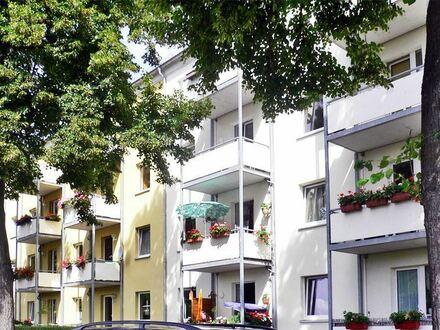 Single-Wohnung in traumhafter ruhiger Lage! 2 Zimmer, Balkon und Wohnküche