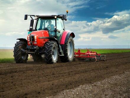 Gegen Gebot: Landwirtschaftsfläche (ca. 4,6 ha) in Garrel