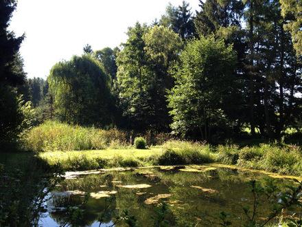 Gartengrundstück mit Teichen und Blick auf den Ith