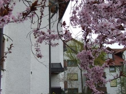 Haus 13A im Hintergrund Haus 13B