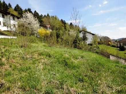 Baugrundstück in Schönberg