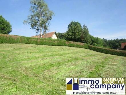 Sonniger Baugrund in Minihof Liebau - 29.500,-- €