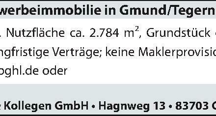 Gewerbeimmobilie in Gmünd/Tegernsee