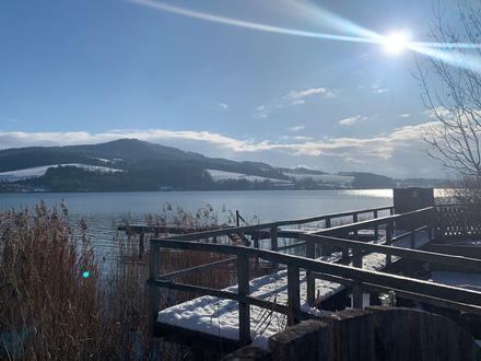 Nah am Wasser gebaut! Traum-Grundstück am Obertrumer See mit Seezugang und eigenem Badeplatz!