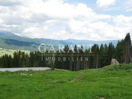 Bauen Sie Ihr eigenes Chaletdorf oder ein Hotel im Familienski- und Wandergebiet Fanningberg!
