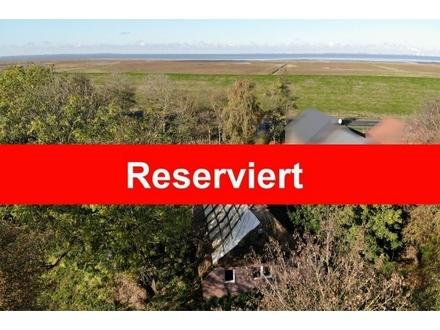 Reserviert: Sanierungsbedürftiges Reetdach Bauernhaus mit knapp 2,5 HA Grundstück direkt am Nordseedeich