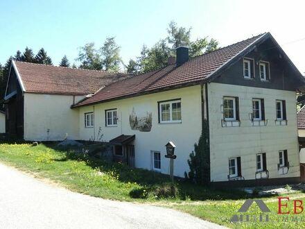 Teilrenoviertes Bauernhaus mit Stallung und renovierungsbedürftiges EFH auf großem Grundstück bei Kirchberg i. W.