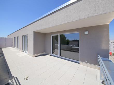 Helle Wohnoase mit weitläufiger Dachterrasse