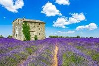 Auslandsimmobilien in Frankreich – Lohnt sich der Kauf?