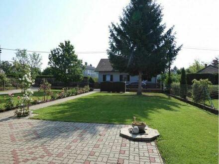 Schönes Haus in begehrter Lage sucht neue Mieter! 120m² Wohnfläche, gute Raumaufteilung!