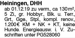 Heiningen, DHH