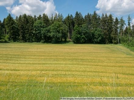 TOP Zukunftsinvestition - Bauerwartungsland - direkt am Ortsrand -