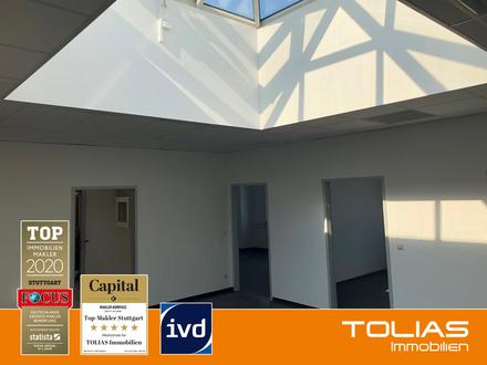 Frisch renoviertes Büro im Gewerbegebiet Eisental - 149 m². Frei ab sofort.