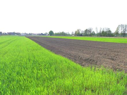 Ackerfläche Gemarkung Nürnberg-Neunhof H 4268