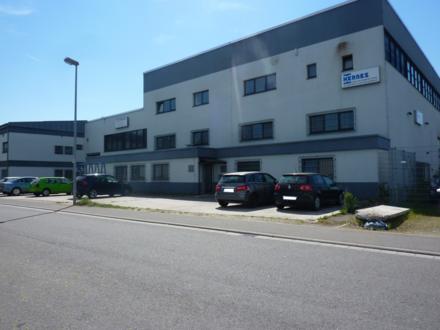 Direkt vom Eigentümer - Büro / Schulungsflächen im Industriegebiet Hockenheim Talhaus