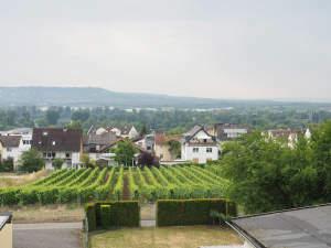 Einfamilienhaus in 1A Blicklage in Rüdesheim-Eibingen