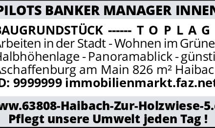 PILOTS BANKER MANAGER INVESTOREN * INNEN --- BAUGRUNDSTÜCK --- T O P L A G E