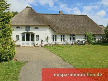 Ehemaliges Bauernhaus in Eidernähe: ein besonderes Anwesen in Feldrandlage mit großem Nebengebäude