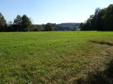 Grosszügiger ebener Baugrund in sonniger erhöhter Lage mit wunderschöner Aussicht - Nähe Fürstenfeld und Thermen